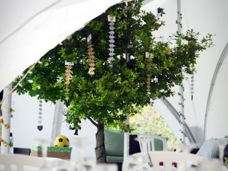 Decorated tree within a marquee